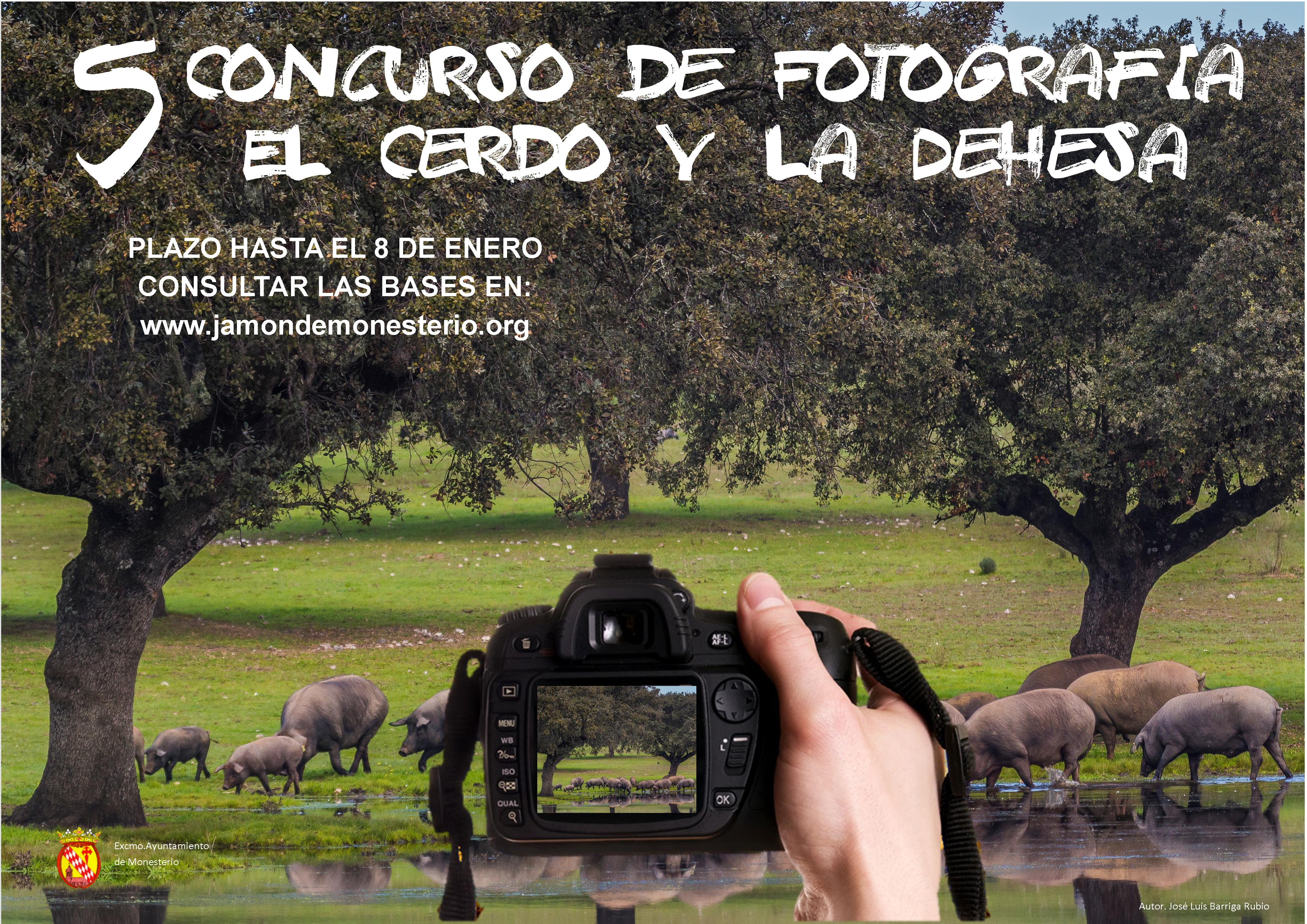 cartel_5_concurso_fotos